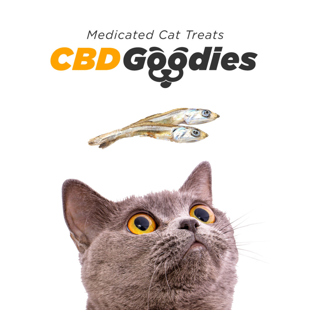 CBD Goodies, Cat Treats