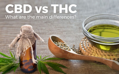 CBD vs THC: What Are the Main Differences?